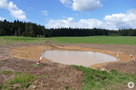 Bachlauf Biotop Mooshof Rötenberg